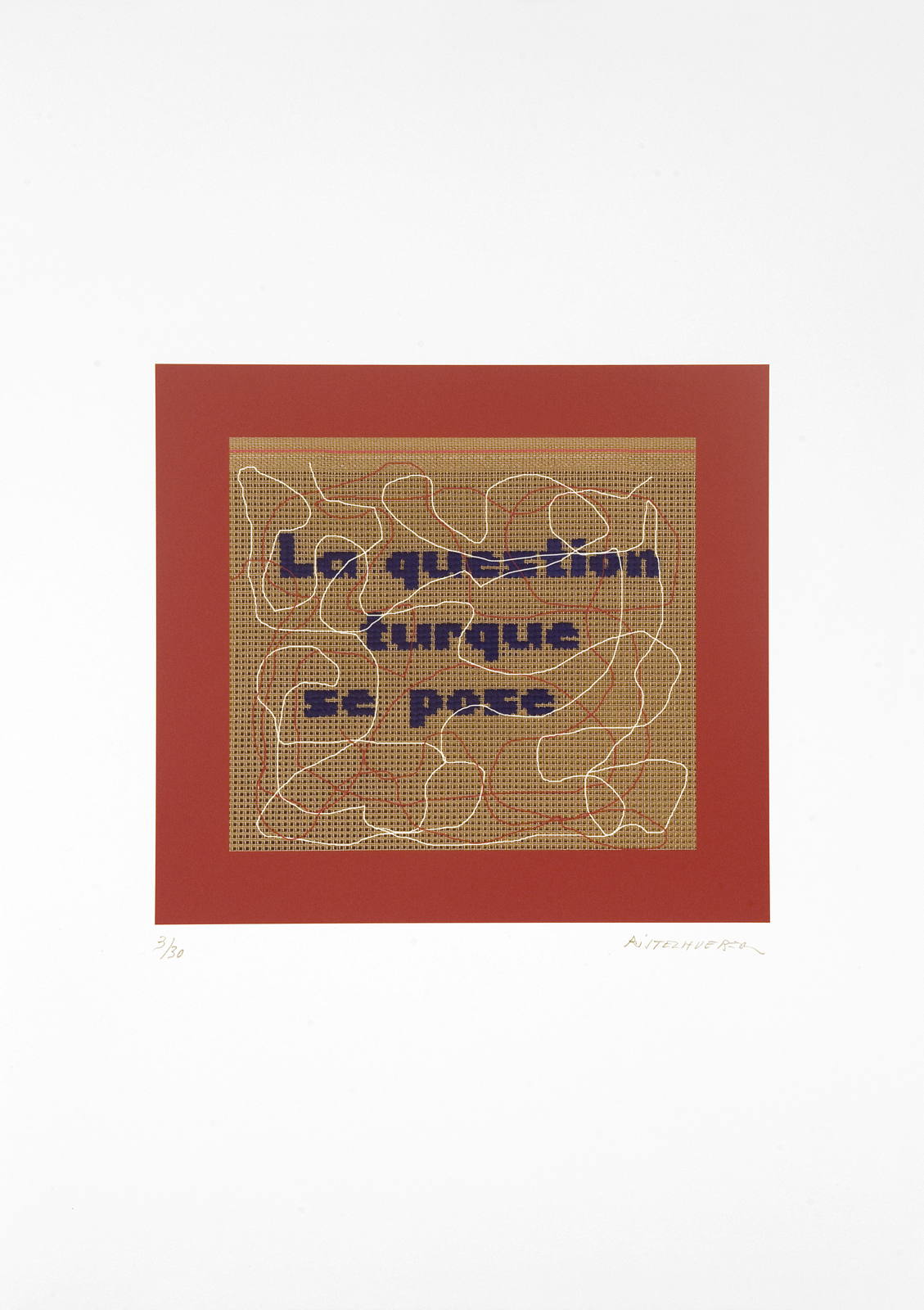 La question turque se pose, 2013